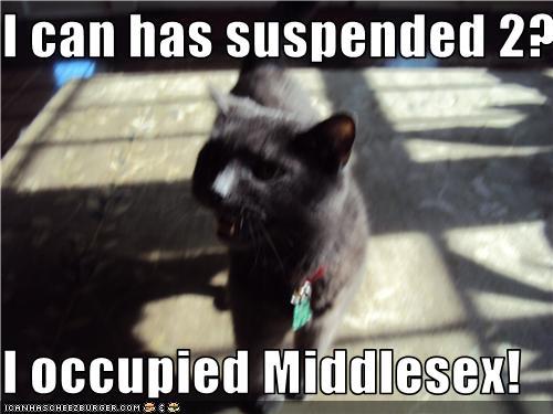 Bronte occupier